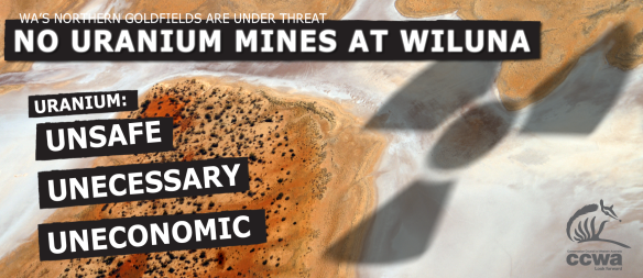 Wiluna uranium proposal includes two separate proposals - Lake Way (conditional approval) and Lake Maitland (not approved). Toro Energy.
